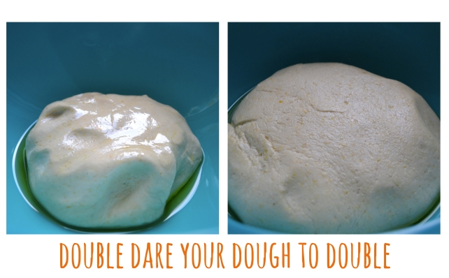 Chicago Style Pizza Dough 4